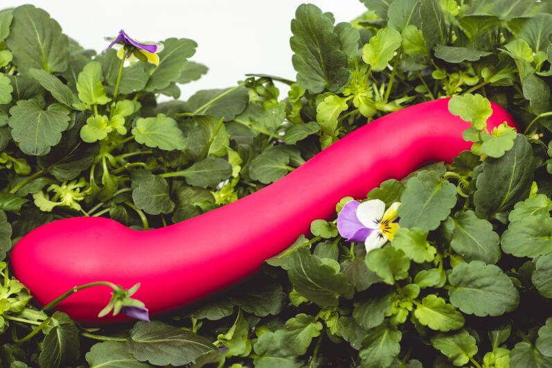 sklepy online takie jak Kinky Winky oferują dilda dla rozmaitego klienta